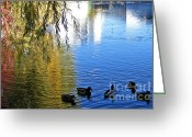 Spokane Greeting Cards - Riverbank Reflections Greeting Card by Kara Kincade
