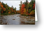 Saco River Greeting Cards - Rivers run through it..fall brilliance Greeting Card by Lloyd Alexander