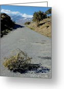 Tumbleweed Greeting Cards - Road 411 above Capileira village in the Alpujarras mountains Greeting Card by Sami Sarkis