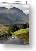 Mist Posters Greeting Cards Greeting Cards - Road Block Greeting Card by Paul  Mealey