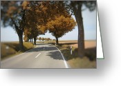 Tree Allee Greeting Cards - Road to Bibertal II Greeting Card by Nafets Nuarb