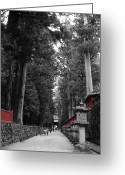Old Pathway Greeting Cards - Road to the Temple Greeting Card by Irina  March