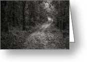 Walk Way Photo Greeting Cards - Road Way In Deep Forest Greeting Card by Setsiri Silapasuwanchai