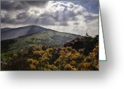 Mountains Photographs Greeting Cards - Roan Mountain Afternoon Greeting Card by Rob Travis
