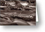 Smoky Mountains Greeting Cards - Roaring Fork Great Smokey Mountains BW Greeting Card by Steve Gadomski