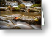 Smoky Mountains Greeting Cards - Roaring Fork Stream Great Smoky Mountains Greeting Card by Steve Gadomski