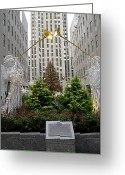 Rockefellar Greeting Cards - Rock Center Christmas Tree Greeting Card by Fran Wild