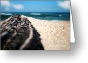 Sand And Sea Greeting Cards - Rock Sand and Sea Greeting Card by Kaye Menner