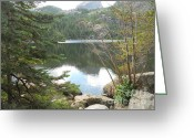 Trees Sculpture Greeting Cards - Rockies Greeting Card by Vickie Arentz