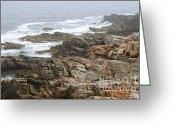 Fort Williams Park Photo Greeting Cards - Rocky coastline II Greeting Card by Hideaki Sakurai
