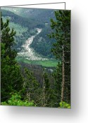 Rocky Mountain National Park Greeting Cards Greeting Cards - Rocky Mountain National Park Greeting Card by Dottie Gillespie