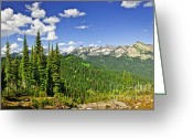 Summit Greeting Cards - Rocky mountain view from Mount Revelstoke Greeting Card by Elena Elisseeva