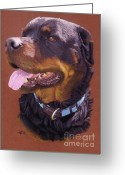 Animalportrait Pastels Greeting Cards - Rocky Greeting Card by Sabine Lackner