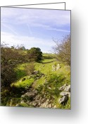 Dry Stone Wall Greeting Cards - Rocky Terrain in Lathkill Dale Greeting Card by Rod Johnson