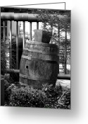 Rain Barrel Photo Greeting Cards - Roll Out the Barrel Greeting Card by Shelley Blair