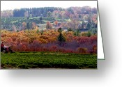 Shelton Greeting Cards - Rolling Hills of Autumn Colors Greeting Card by Margie Avellino