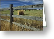 Wood Fences Greeting Cards - Rolls Of Hay Fill A Farmers Field Greeting Card by Raymond Gehman
