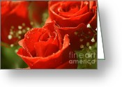 Flower Show Greeting Cards - Romance Greeting Card by Cheryl Young