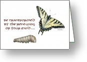 Metamorphosis Drawings Greeting Cards - Romans 12 Be Transformed Card Greeting Card by Betsy Gray