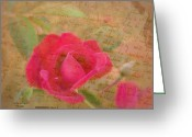 Sentiments Greeting Cards - Romantic Rose Notes Greeting Card by Cindy Wright