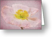 Delicate Mixed Media Greeting Cards - Romantico Greeting Card by Angela Doelling AD DESIGN Photo and PhotoArt