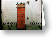 Baby Birds Greeting Cards - Roof Top Hoppers Greeting Card by Gothicolors With Crows