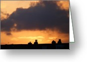 Fire Houses Greeting Cards - Rooftop sunset Greeting Card by Carol Lynch