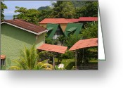 Playa Greeting Cards - Rooftops Costa Rica Greeting Card by Michelle Wiarda