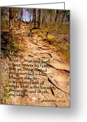Stair Walk Greeting Cards - Rooted Path with Scripture Greeting Card by Cindy Wright