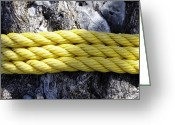 Tying Greeting Cards - Rope Around a Tree Trunk Greeting Card by Skip Nall