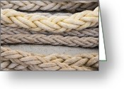 Tying Greeting Cards - Ropes Greeting Card by Shannon Fagan