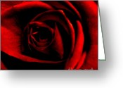 Office Art Greeting Cards - Rose Greeting Card by CML Brown