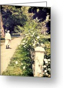 Older Woman Photo Greeting Cards - Rose Garden Greeting Card by HD Connelly