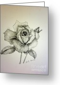 Monotone Painting Greeting Cards - Rose in Monotone Greeting Card by Pamela  Meredith