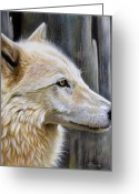 Wolf Song Studio Greeting Cards - Rose Greeting Card by Sandi Baker