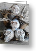 Sculptures For Sale Photo Greeting Cards - Rose Skulls Greeting Card by FaerieBlueMoon Creations Tressure Hardcastle