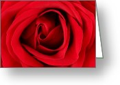 Romanticism Digital Art Greeting Cards - Roses For Life  Greeting Card by Mark Ashkenazi