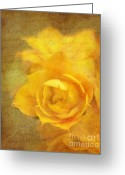 Reminiscing Greeting Cards - Roses for Remembrance Greeting Card by Judi Bagwell
