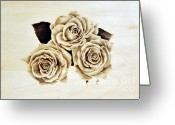 Floral Pyrography Greeting Cards - Roses Greeting Card by Ilaria Andreucci