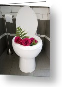 Toilet Paper Greeting Cards - Roses in a Toilet Greeting Card by Marlene Ford