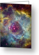 Interstellar Clouds Photo Greeting Cards - Rosette Nebula Ngc 2244 In Monoceros Greeting Card by Filipe Alves