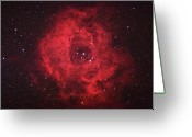 Nebula Greeting Cards - Rosette Nebula Greeting Card by Pat Gaines
