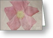 Texture Flower Photo Greeting Cards - Rosey Greeting Card by Heather Applegate