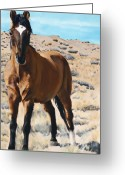 Wild Horse Painting Greeting Cards - Rough and Ready Greeting Card by Jack Atkins
