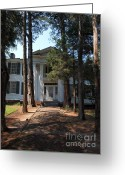 Mississippi County Greeting Cards - Rowen Oak Porch Greeting Card by Joshua House