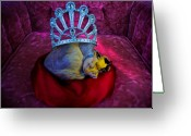 Adam Gabriel Winnie Greeting Cards - Royal Queen Greeting Card by Adam Winnie