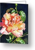Rose Petals Greeting Cards - Royal Rose Greeting Card by David Lloyd Glover