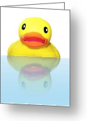 Bathe Greeting Cards - Rubber Ducky Greeting Card by Karen Wallace