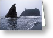 Olympic National Park Greeting Cards - Ruby Beach And The Pacific Coast Greeting Card by Rich Reid