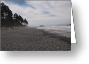 Clods Greeting Cards - Ruby Beach  Greeting Card by Jim Moore